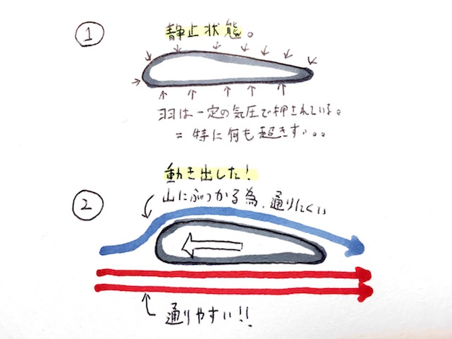 絵:Shinnosuke Miyano